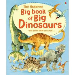 Książka po angielsku - Big Book of Big Dinosaurs